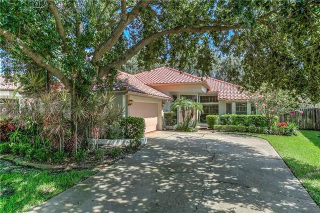 1001 Live Oak Avenue NE, St Petersburg, FL 33703 (MLS #W7812116) :: Lovitch Realty Group, LLC