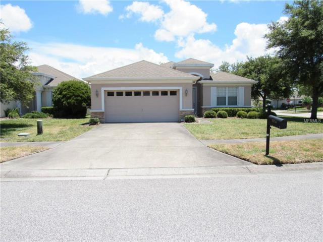 14746 Potterton Circle, Hudson, FL 34667 (MLS #W7812146) :: Team Suzy Kolaz