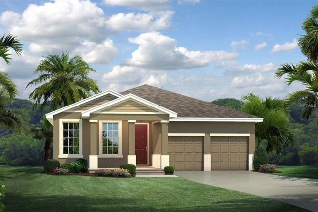 16049 Malay Ginger Drive, Winter Garden, FL 34787 (MLS #W7812162) :: Bustamante Real Estate