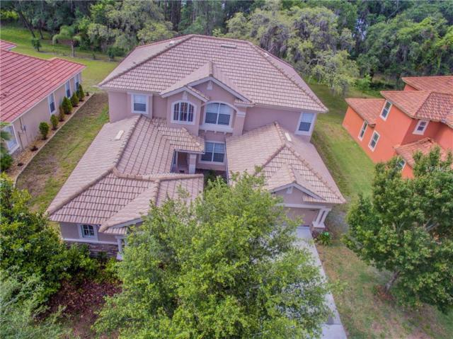 11748 Manistique Way, New Port Richey, FL 34654 (MLS #W7812194) :: The Duncan Duo Team
