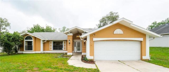 231 Dan River Drive, Spring Hill, FL 34606 (MLS #W7812302) :: Team Bohannon Keller Williams, Tampa Properties