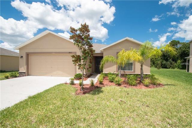 18603 Briar Oaks Drive, Hudson, FL 34667 (MLS #W7812402) :: Team Bohannon Keller Williams, Tampa Properties