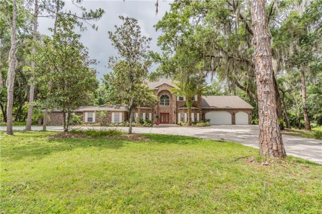 5415 Shakespeare Drive, Dover, FL 33527 (MLS #W7812422) :: Team Bohannon Keller Williams, Tampa Properties