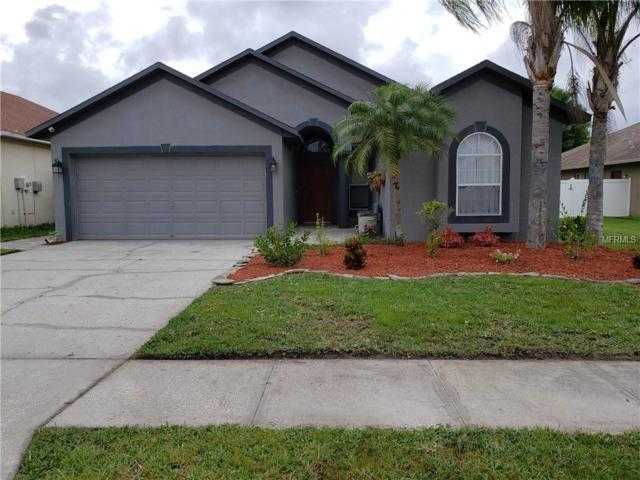 1105 Jacob Way, Odessa, FL 33556 (MLS #W7812438) :: Cartwright Realty