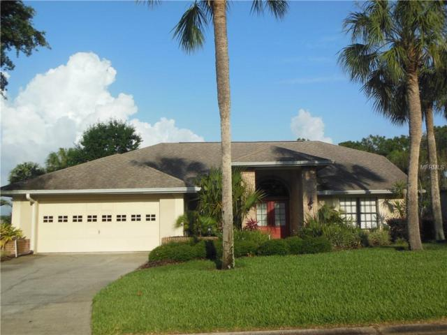 12639 Flamingo Parkway, Spring Hill, FL 34610 (MLS #W7812485) :: The Duncan Duo Team