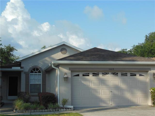 16618 Caracara Court, Spring Hill, FL 34610 (MLS #W7812487) :: Lovitch Realty Group, LLC