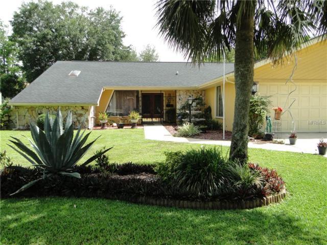 7488 River Country Drive, Weeki Wachee, FL 34607 (MLS #W7812532) :: Team TLC | Mihara & Associates