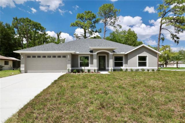 11475 Old Squaw Avenue, Weeki Wachee, FL 34614 (MLS #W7812551) :: The Duncan Duo Team