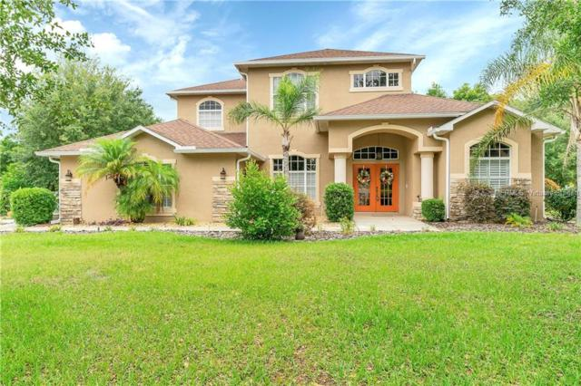 372 Florian Way, Spring Hill, FL 34609 (MLS #W7812563) :: The Duncan Duo Team