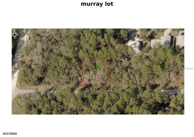 3215 E Murray Street, Inverness, FL 34453 (MLS #W7812585) :: Paolini Properties Group