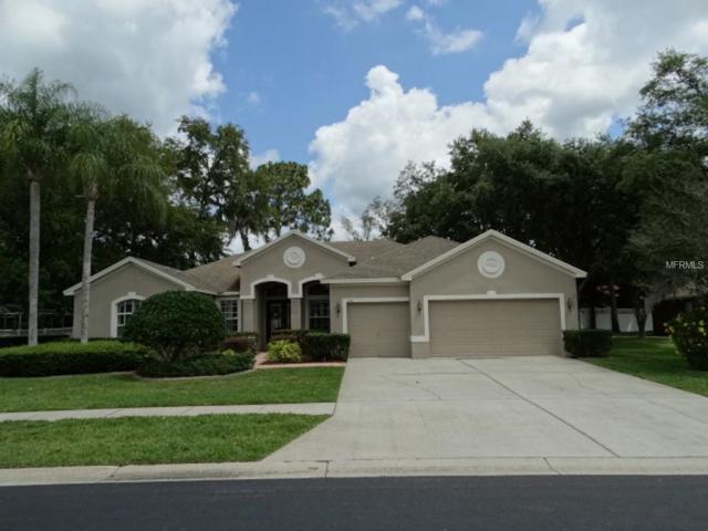 15516 Carrillon Estates Boulevard, Tampa, FL 33625 (MLS #W7812624) :: Team TLC | Mihara & Associates