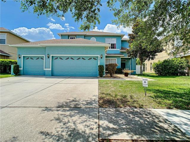 4481 Birchfield Loop, Spring Hill, FL 34609 (MLS #W7812645) :: Mark and Joni Coulter | Better Homes and Gardens