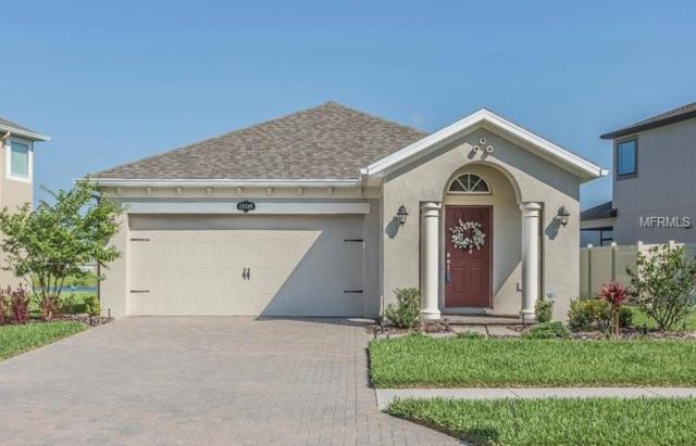 19349 Roseate Drive, Lutz, FL 33558 (MLS #W7812663) :: Team TLC | Mihara & Associates