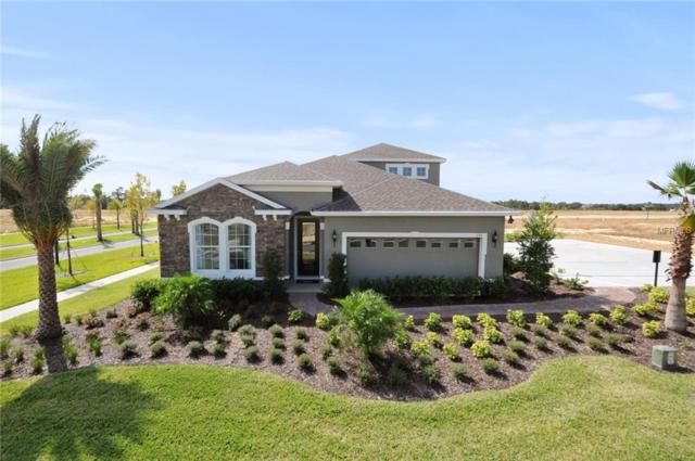 6222 113TH Terrace E, Parrish, FL 34219 (MLS #W7812677) :: Jeff Borham & Associates at Keller Williams Realty