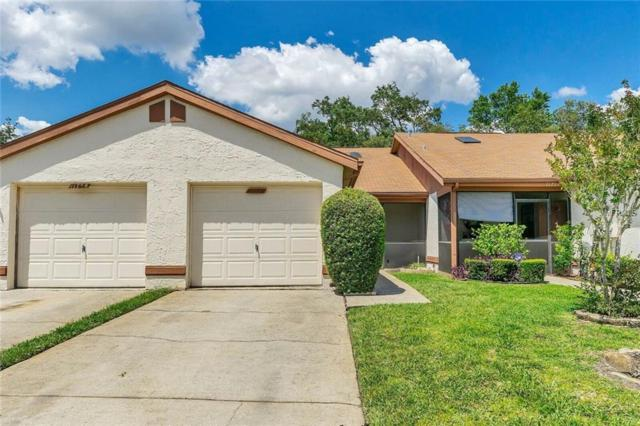 11756 Spring Tree Lane, Port Richey, FL 34668 (MLS #W7812696) :: Bustamante Real Estate