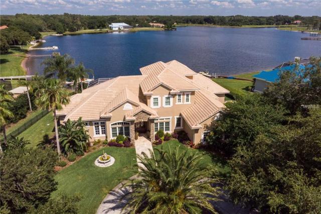 18205 Patterson Road, Odessa, FL 33556 (MLS #W7812711) :: Team Bohannon Keller Williams, Tampa Properties