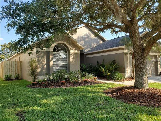 29434 Sea Dahlia Pass, Wesley Chapel, FL 33543 (MLS #W7812715) :: Godwin Realty Group
