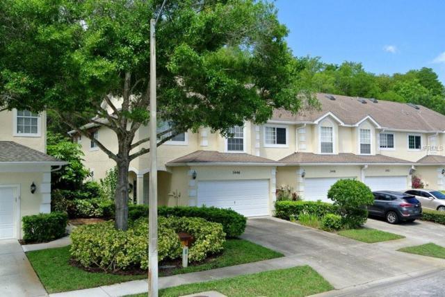 3446 Primrose Way, Palm Harbor, FL 34683 (MLS #W7812721) :: Burwell Real Estate