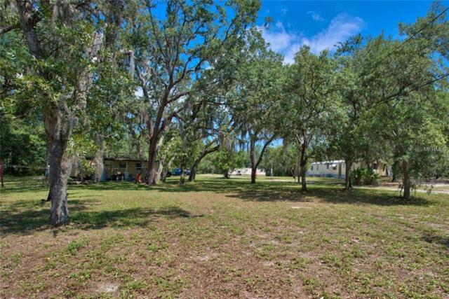 12421 Choctaw Trail, Hudson, FL 34669 (MLS #W7812724) :: The Duncan Duo Team