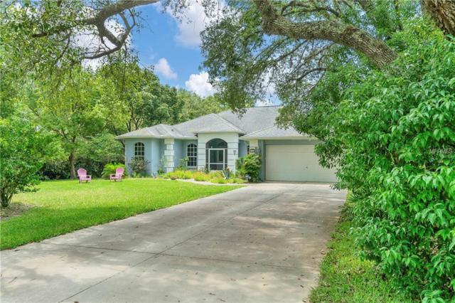 9185 Bunting Road, Weeki Wachee, FL 34613 (MLS #W7812740) :: Remax Alliance