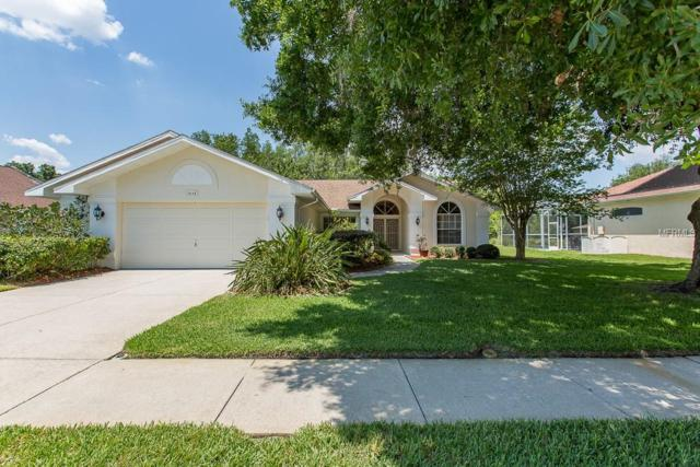 1415 Jutland Drive, Trinity, FL 34655 (MLS #W7812743) :: Team Bohannon Keller Williams, Tampa Properties