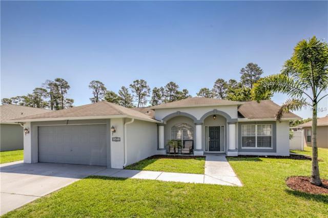 10548 Magrath Lane, New Port Richey, FL 34654 (MLS #W7812748) :: Premium Properties Real Estate Services