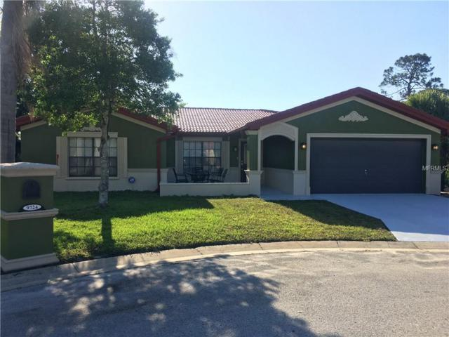 9724 San Vincente Way, Port Richey, FL 34668 (MLS #W7812754) :: The Duncan Duo Team