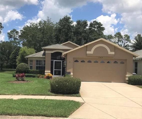 11819 Aranda Court, Hudson, FL 34667 (MLS #W7812760) :: Team Bohannon Keller Williams, Tampa Properties