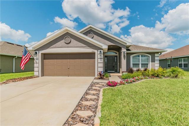 13601 Niti Drive, Hudson, FL 34669 (MLS #W7812761) :: Jeff Borham & Associates at Keller Williams Realty