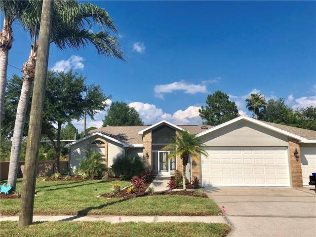 5316 Sagamore Court, New Port Richey, FL 34655 (MLS #W7812768) :: Team Bohannon Keller Williams, Tampa Properties