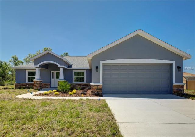 11396 Quill Avenue, Weeki Wachee, FL 34614 (MLS #W7812774) :: RE/MAX Realtec Group