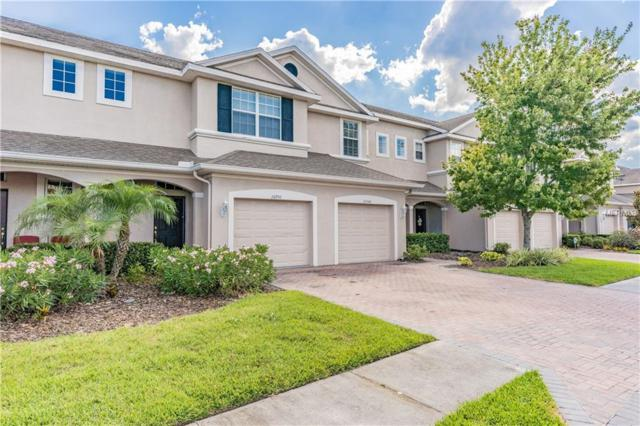 26950 Juniper Bay Drive, Wesley Chapel, FL 33544 (MLS #W7812776) :: GO Realty