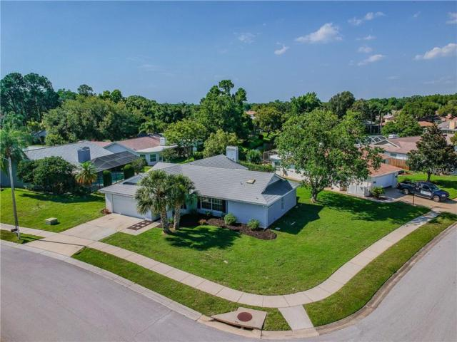 3504 Sarazen Drive, New Port Richey, FL 34655 (MLS #W7812777) :: Team Bohannon Keller Williams, Tampa Properties