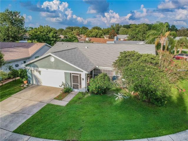 3514 Sarazen Drive, New Port Richey, FL 34655 (MLS #W7812782) :: Team Bohannon Keller Williams, Tampa Properties