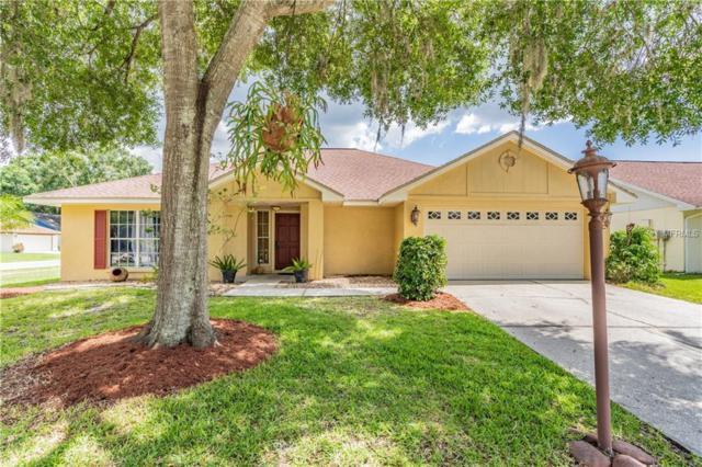 15122 Nighthawk Drive, Tampa, FL 33625 (MLS #W7812783) :: Team 54