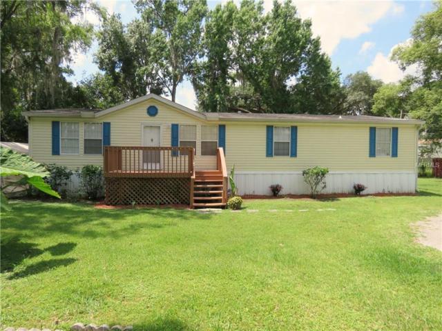 14524 Halfway Lane, Odessa, FL 33556 (MLS #W7812796) :: Team Bohannon Keller Williams, Tampa Properties