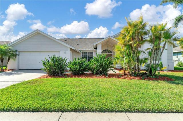 19623 Lake Osceola Lane, Odessa, FL 33556 (MLS #W7812804) :: Team Bohannon Keller Williams, Tampa Properties