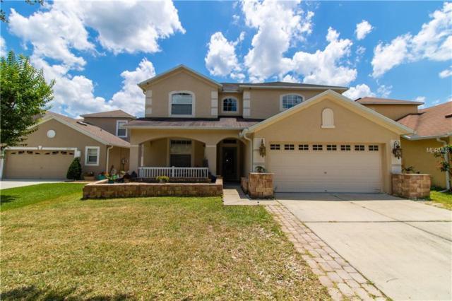 15741 Cedar Elm Terrace, Land O Lakes, FL 34638 (MLS #W7812811) :: Cartwright Realty