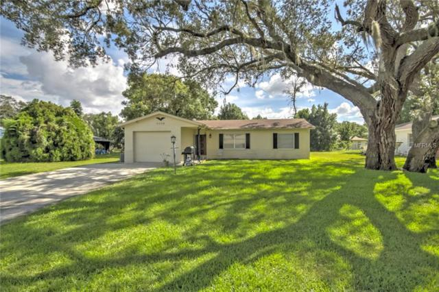 6094 Newmark Street, Spring Hill, FL 34606 (MLS #W7812817) :: The Duncan Duo Team