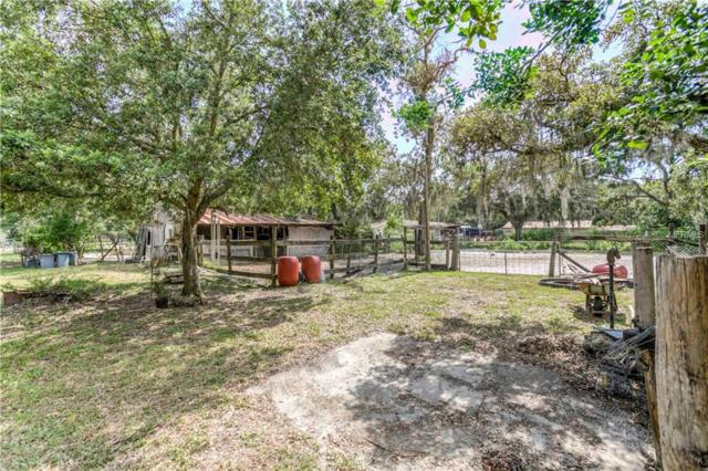 14541 Boland Avenue, Spring Hill, FL 34610 (MLS #W7812820) :: The Duncan Duo Team