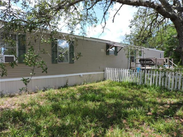 13415 Lelani Drive, Weeki Wachee, FL 34614 (MLS #W7812832) :: The Duncan Duo Team