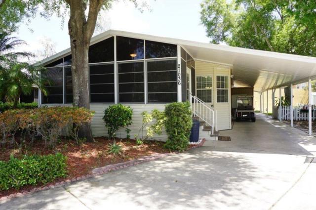 21036 Little Magens Loop, Lutz, FL 33558 (MLS #W7812841) :: Team Bohannon Keller Williams, Tampa Properties