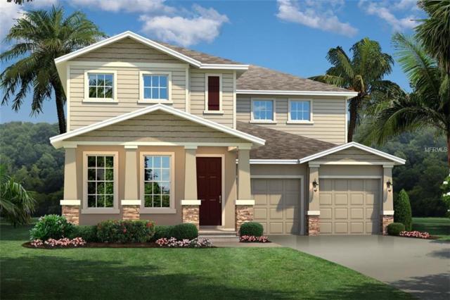 16055 Maylay Ginger Drive, Winter Garden, FL 34787 (MLS #W7812843) :: Bustamante Real Estate