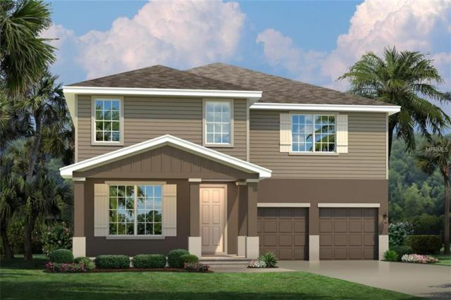 16067 Malay Ginger Drive, Winter Garden, FL 34787 (MLS #W7812850) :: Bustamante Real Estate