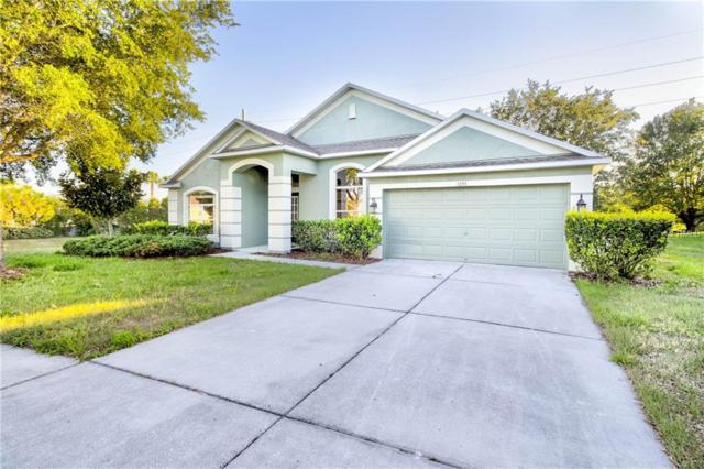 5235 Greystone Drive, Spring Hill, FL 34609 (MLS #W7812905) :: Mark and Joni Coulter | Better Homes and Gardens