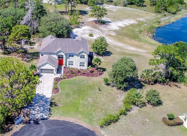 11000 Gig Avenue, Weeki Wachee, FL 34613 (MLS #W7812936) :: Mark and Joni Coulter | Better Homes and Gardens