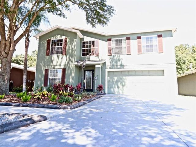 2105 Ashley Lakes Drive, Odessa, FL 33556 (MLS #W7812947) :: Team 54