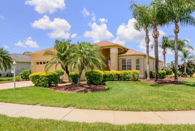 12104 Broadgreen Place, Trinity, FL 34655 (MLS #W7812950) :: RE/MAX CHAMPIONS
