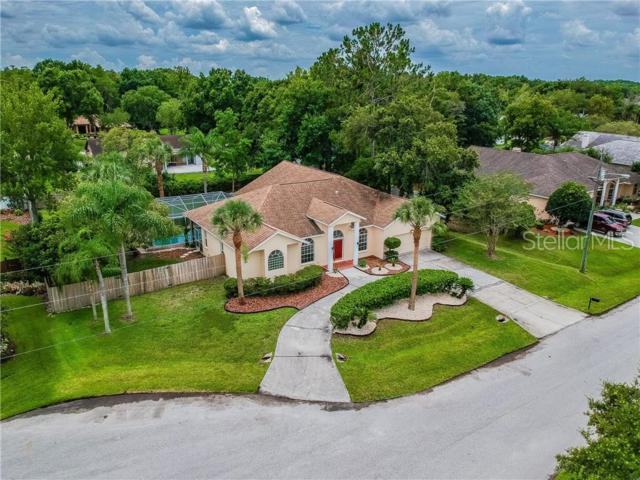 25036 Bristlecone Court, Land O Lakes, FL 34639 (MLS #W7813057) :: GO Realty