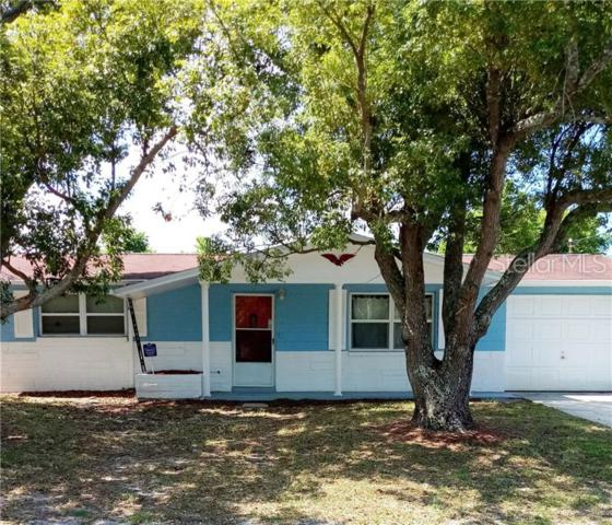 Address Not Published, Port Richey, FL 34668 (MLS #W7813161) :: The Duncan Duo Team